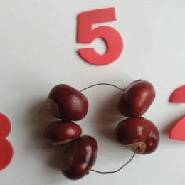 Rozklad čísel