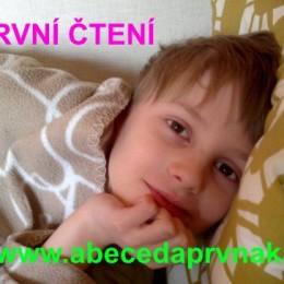 Leinvweberová, Smutná, děti a čtení, český jazyk